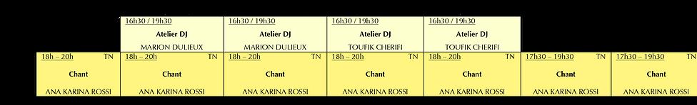 Cours de chant - dj - musique 2019.png