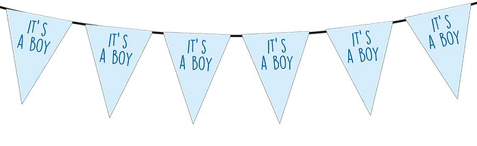Its a Boy Small Triangle Bunting