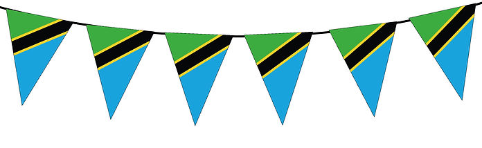 Small Triangle Bunting Flag of Tanzania
