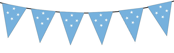 Small Triangle Bunting Flag of Micronesia