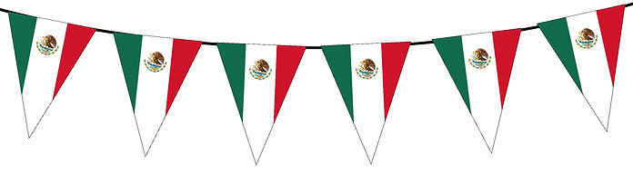 Small Triangle Bunting Flag of Mexico