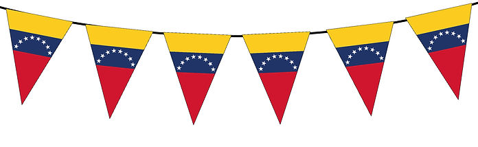 Small Triangle Bunting Flag of Venezuela
