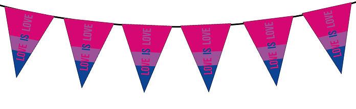Pride Flag Love is Love-Bisexual