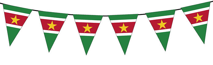 Small Triangle Bunting Flag of Suriname
