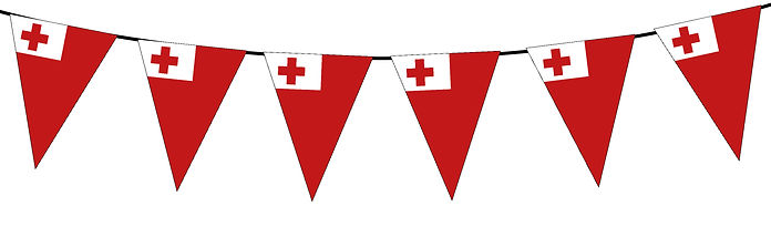 Small Triangle Bunting Flag of Tonga