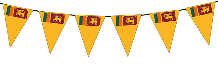 Small Triangle Bunting Flag of Sri Lanka