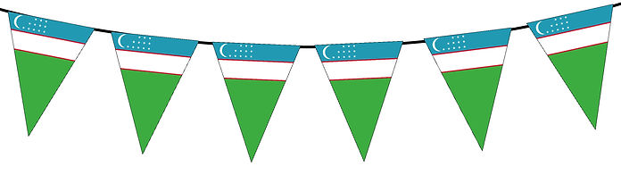Small Triangle Bunting Flag of Uzbekistan