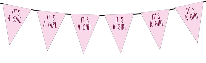 Its a Girl Small Triangle Bunting