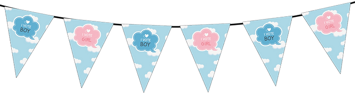 Small Triangle Bunting I Vote Boy or Girl Gender Reveal-01