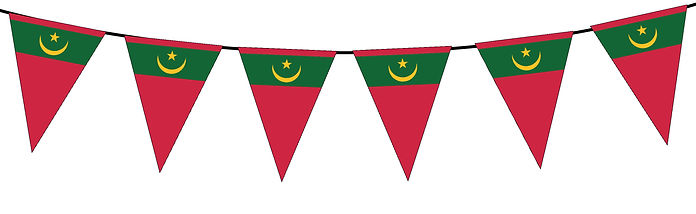 Small Triangle Bunting Flag of Mauritania