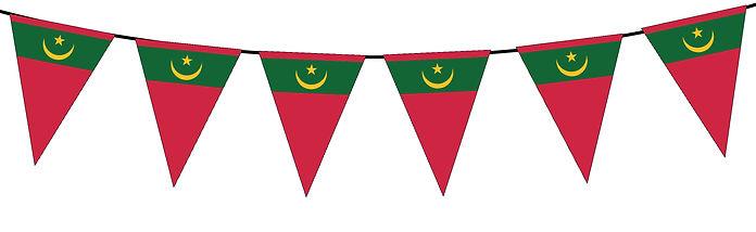 Small Triangle Bunting Flag of Mauritania