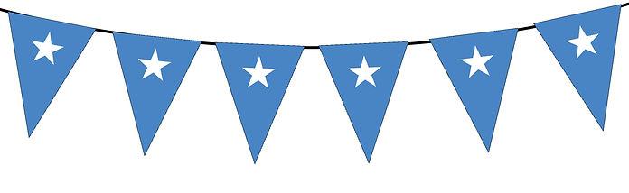 Small Triangle Bunting Flag of Somalia