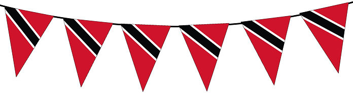 Small Triangle Bunting Flag of Trinidad and Tobago