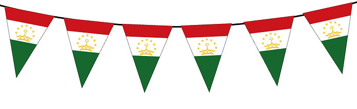 Small Triangle Bunting Flag of Tajikistan