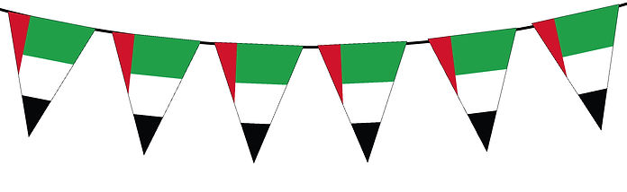 Small Triangle Bunting Flag of UAE
