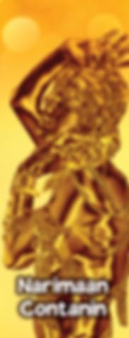 Metamorphosis_site_NARIMAN.png