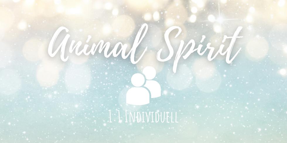 Animal Spirit - Tierkommunikation Onlinekurs 1:1 Individuell