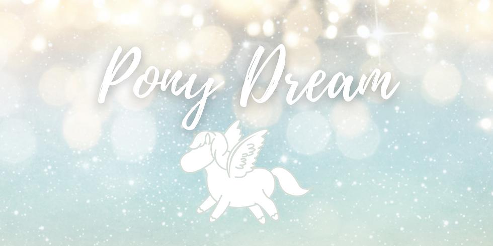 PONY DREAM | Tierkommunikation für Kinder mit Begleitung | online
