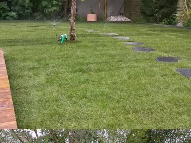 Création d'un sublime jardin sur Bruges