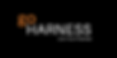 goHarness Logo_400x200_Black (1).png