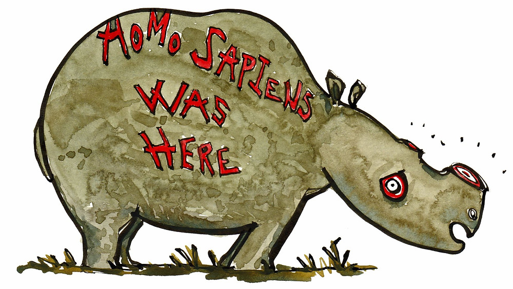 Næsehornets horn bruges af folk i håbet om, at det kan modvirke tømmermænd. Illustration: hikingartist.com