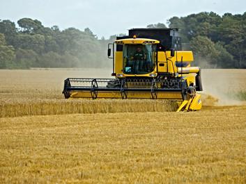 Landbrugsmaskiner kører tusindvis af dyr over