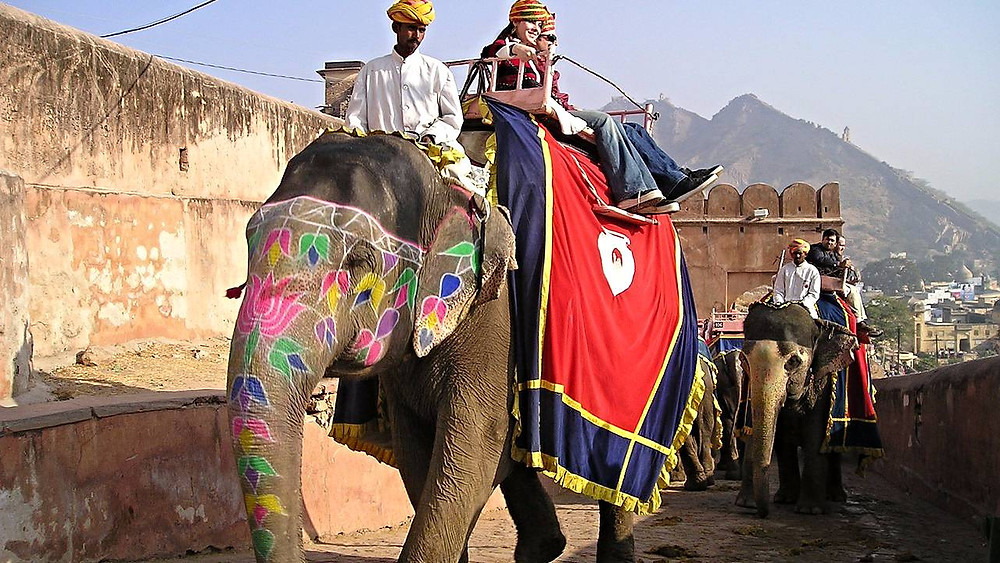 Jysk Rejsebureau vil ikke længere tilbyde sine rejsende muligheden for rideture på elefanter. Foto: Pixabay