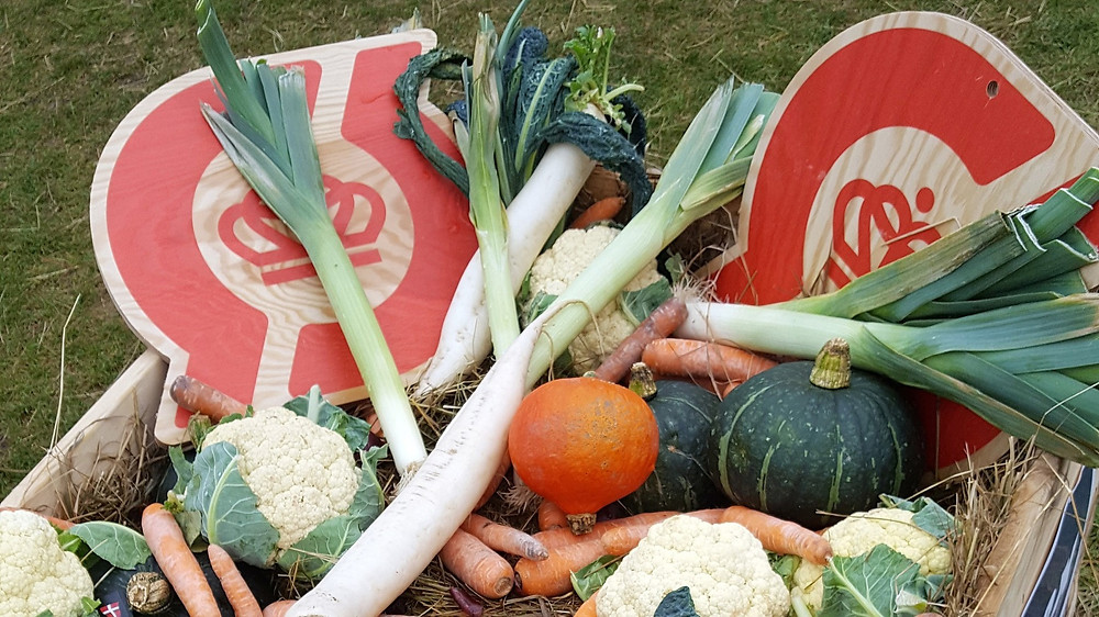 Økologisk mad er ikke en større klimasynder end konventionel mad, lyder det fra forskningscentret Icrofs. Foto: Helene Uller-Kristensen
