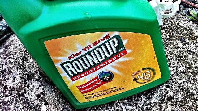 """Glyfosat, der findes i Roundup, blev af WHO i år klassificeret som """"potentielt kræftfremkaldende"""". Foto: Jacob Bøtter/flickr"""