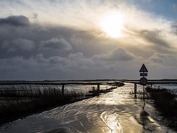 DMI: Indbyggere i danske kystbyer skal vænne sig til oversvømmelser