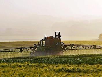 Forskere: Pesticider er ikke sikre, selvom de er godkendt af myndighederne