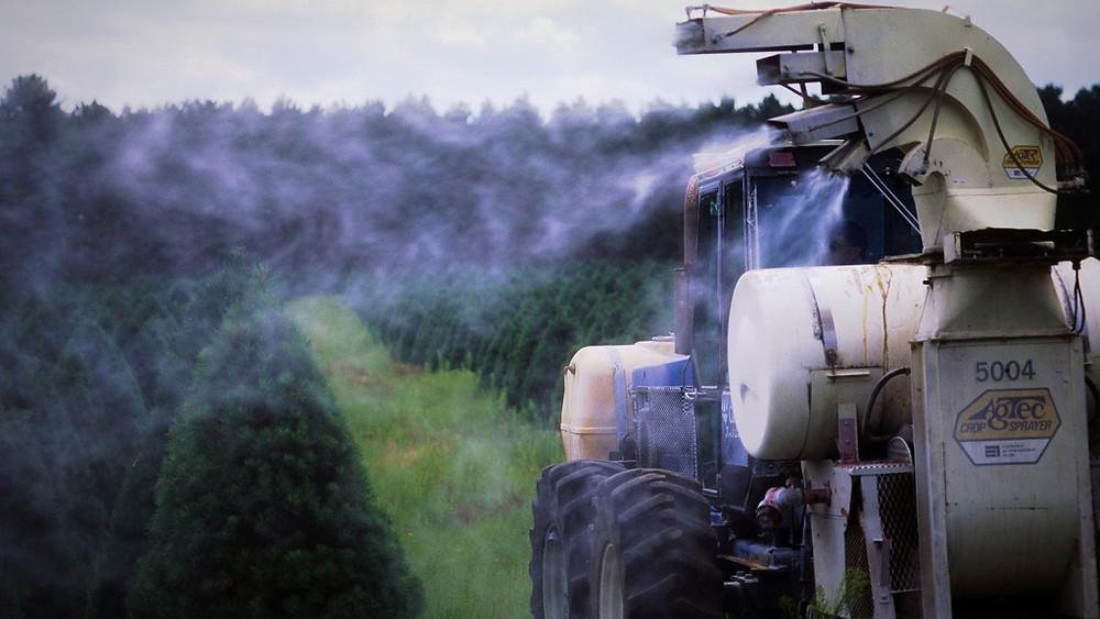 Landbrugets monokultur og brug af sprøjtegifte er blandt årsagerne til udryddelsen af dyre- og plantearter, mener en professor, der forsker i fødevaresystemer. Foto: Wisconsin Department of Natural Resources/flickr