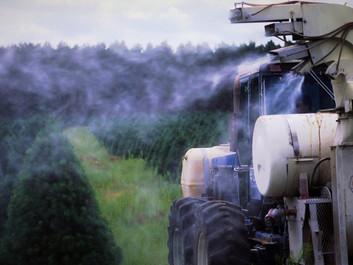 Professor: Industrilandbrug er skyld i Den Sjette Masseudryddelse