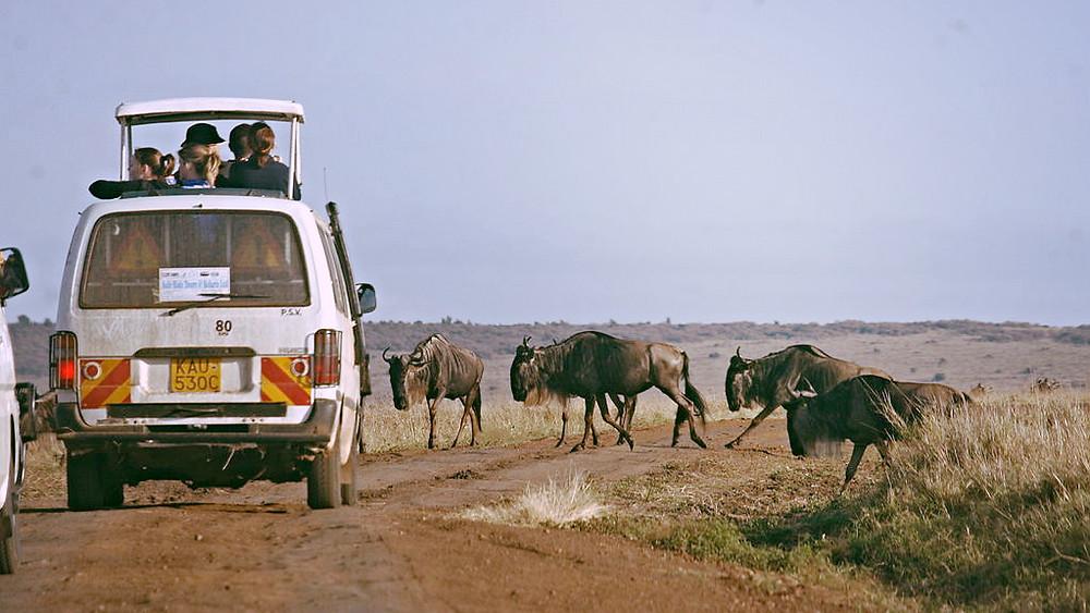 Turister skal undlade at tilkendegive, hvor deres billeder er taget, hvis de lægger dem ud på sociale medier. Genrefoto