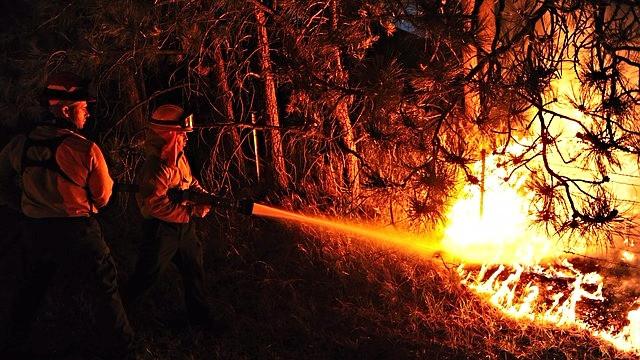Et amerikansk undersøgelse viser, at klimaforandringer har forlænget sæsonen for skovbrande i USA med 78 dage siden 1970. Foto: Pixabay