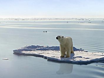 FN's klimapanel i ny rapport: »De næste få år er nok de vigtigste i menneskets historie«