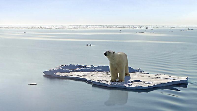 Mængden af is på Arkits svinder ind år for år. Foto: Gerard Van der Leun/flickr