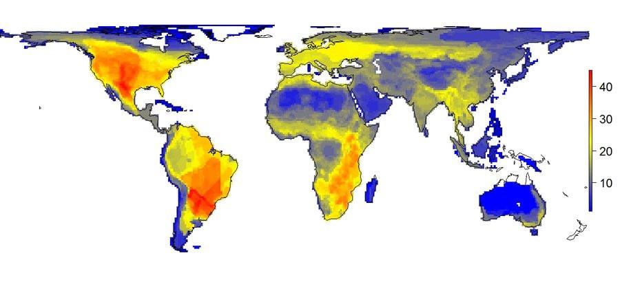 Udbredelsen af store pattedyr i en verden uden mennesker vises med gule og røde farver. Illustration: Søren Faurby