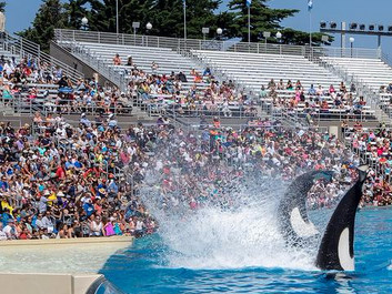 Er det begyndelsen på enden for SeaWorld i Californien?