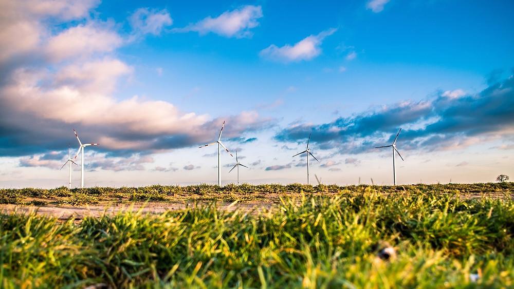 Vores samfund skal blive bæredygtigt hurtigst muligt, lyder opfordringen fra en række ledere i en ny rapport. Foto: Pixabay