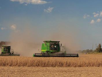 Dyreværnsforkæmper: Industrilandbruget er ondt og ødelæggende for kloden