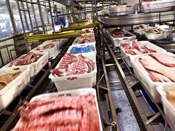 Resistente bakterier i hver 3. pakke svinekød