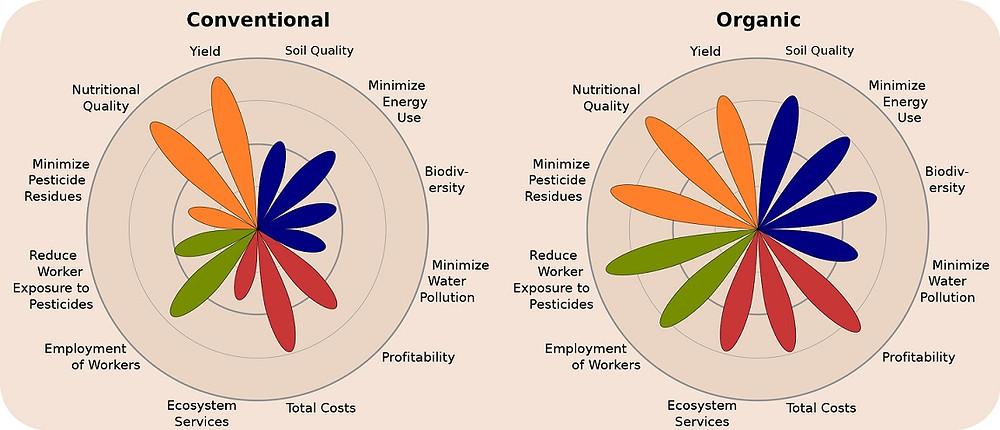 Grafikken viser, at økologi har en større balance på de fire undersøgte områder: miljø, produktivitet, økonomi og påvirkning af samfundet. Grafik: Organic Agriculture in the 21st Century/Washington State University