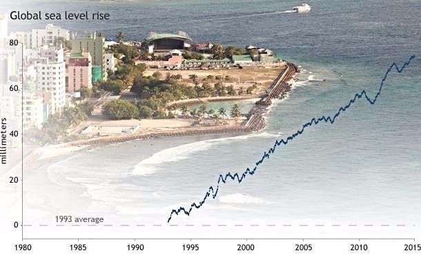 Havet er steget næsten 80 mm i forhold til gennemsnittet i 1993. Grafik: State of the Climate 2014, Noaa