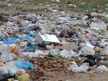 Hawaii forbyder plastikposer
