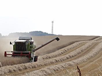 Økonom advarer mod Venstres landbrugsplan