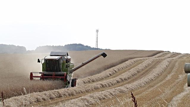 Venstres landbrugsudspil kan næppe redde landbruget, lyder det fra eksperter. Foto: Pixabay
