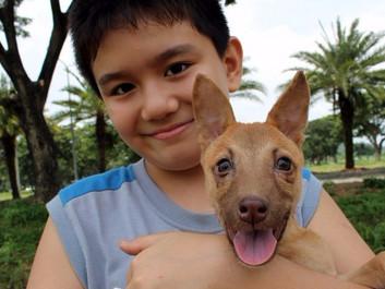 10-årig dreng driver sit eget dyreinternat