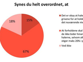 Hvert sekund mister en dansk gris sin hale