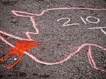 Australien giver asyl til næsehorn